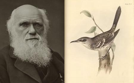 Los manuscritos de Charles Darwin